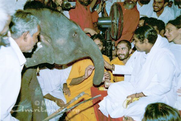Amma giving darshan to Ram the elephant