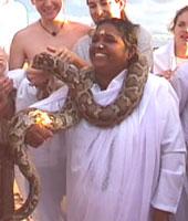 Amma & Python