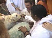 Amma giving darshan to a dog