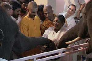 Amma with elephants Ram and Lakshmi