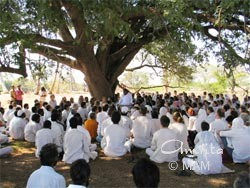 Amma sitting under a tree with the tour group