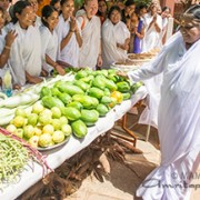 Vegetable-Amma