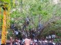 12-krishna-jayanthi28